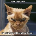 funny-pictures-cat-has-friend-for-dinner.jpg